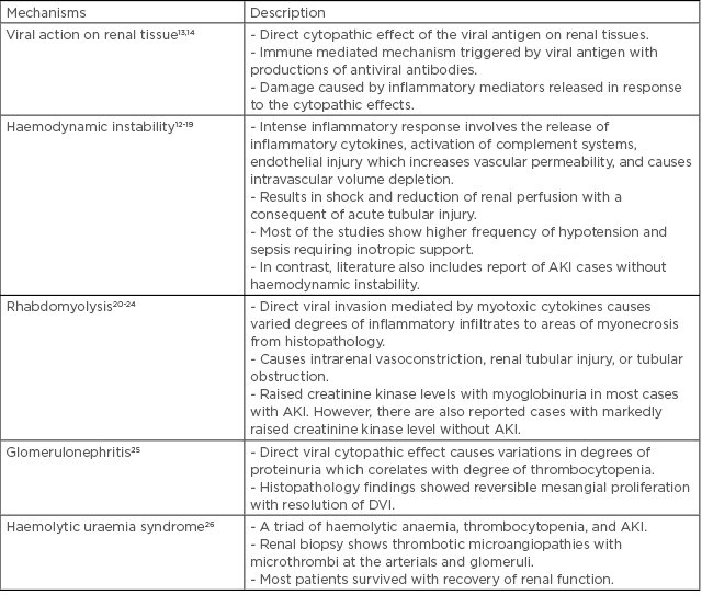 Dengue Associated Acute Kidney Infection An Updated And Comprehensive Qualitative Review Of Literature European Medical Journal